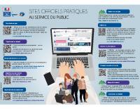 P51 infographie_des_teleservices